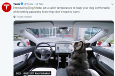 Dog Mode geïntroduceerd in Tesla 3